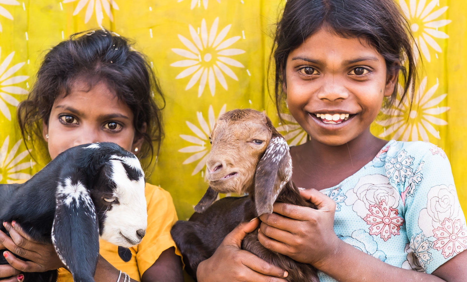 Two pretty smiling girls holding their pet goat.