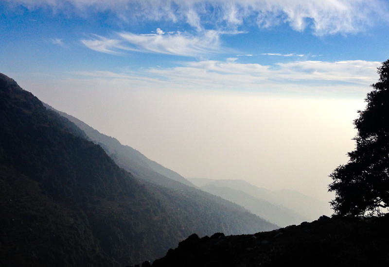 A view from Triund path